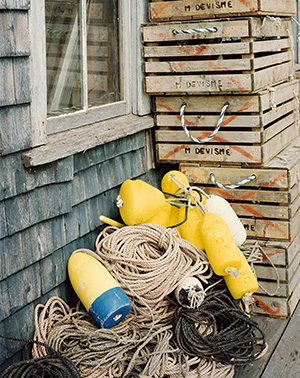 Yellow Buoys at F.W. Thurston's Wharf